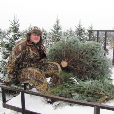 Christmas Trees With Hayride
