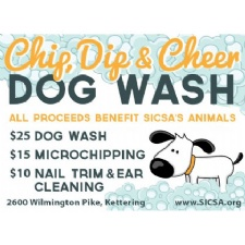 Chip, Dip & Cheer Dog Wash