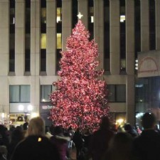 Dayton Holiday Festival Searching for Perfect Tree to Adorn Courthouse Square