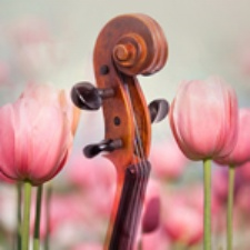 Dayton Philharmonic: Nature's Way