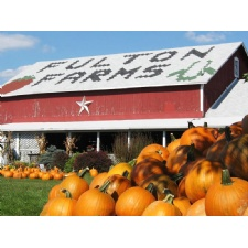 Fulton Farm Corn Maze, Pumpkin Patch & Hayride