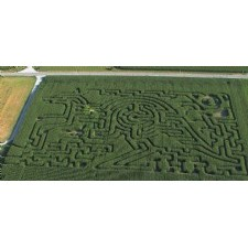 Outback Adventure Corn Maze at Idle Hour Ranch