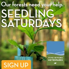 Seedling Saturdays In Five Rivers Metroparks