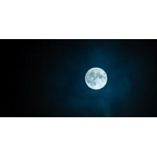 Full Moon Wildflower Hike at Glen Helen