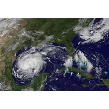 Family Day: Meteorology Mania