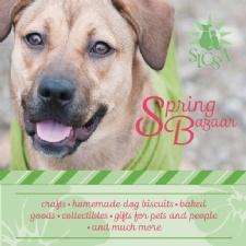 Friends of SICSA Annual Spring Bazaar