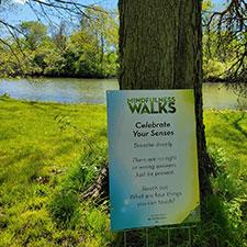 MetroParks announces new Mindfulness Walks