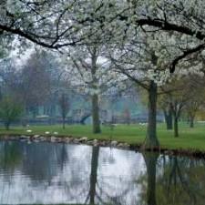 Yoctangee Park