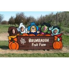 Brumbaugh Fruit and Fun Farm