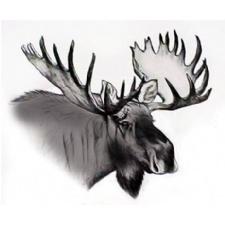 Fairborn Moose Lodge 1068