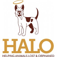 Helping Animals Lost and Orphaned (HALO)