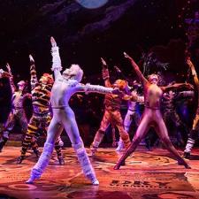 Broadway in Dayton: Cats