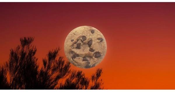 Cookie Swap & Full Moon Hike
