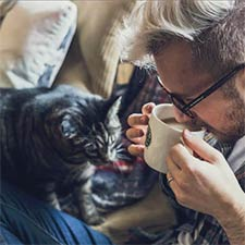 Cat Cafe to open in Dayton this Summer