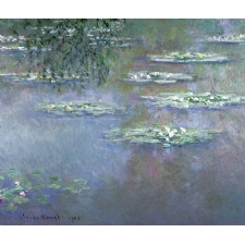 Monet's Waterlilies at the Dayton Art Institute
