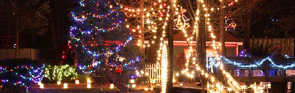Christmas Lights Around Piqua Ohio 2021 Best Christmas Lights Around Dayton 2019