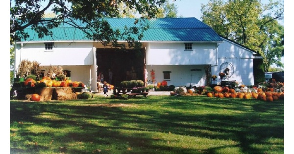 Sizemore Farm - Fall Family Fun