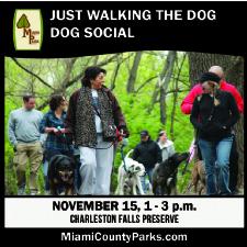 Dog Social Just Walking the Dog