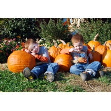 Bonnybrook Farms' Fall Farm Days