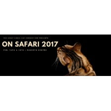 GLCC's On Safari 2017