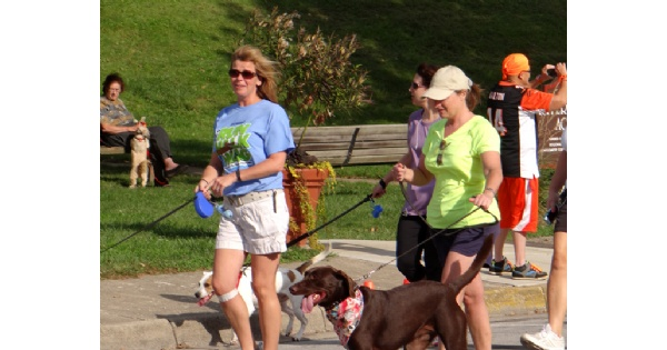 Annual 5k-9 Run, Walk and Wag