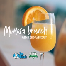Mimosa Brunch at the Gem City Catfe