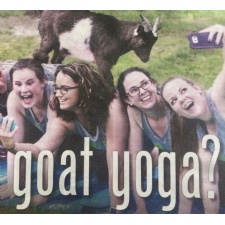 Goat Yoga Experience
