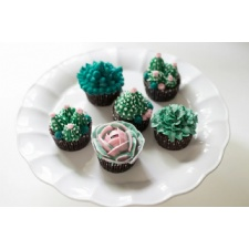 Lovely, a cupcake decorating workshop- Succulents