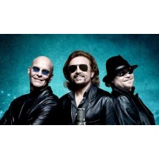 Night Fever- Bee Gees Tribute Band