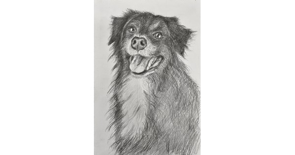 Drawing Course. Age 12-18