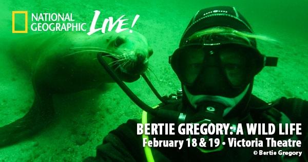 Bertie Gregory: A Wild Life