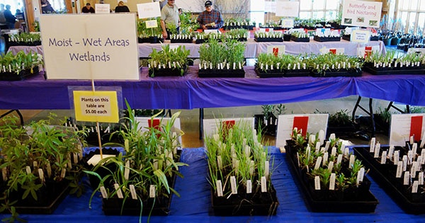 Aullwood Native Plant Sale