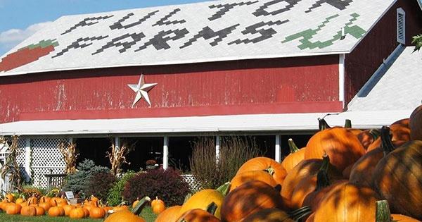 Fulton Farm Corn Maze, Pumpkin Patch & Hayride