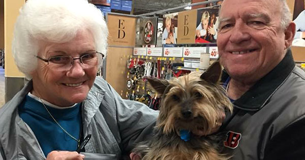 Luv4K9s Dog Adoption Event at Pet Supplies Plus Kettering