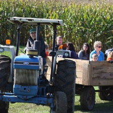 McMonigle Farms Pumpkin Fest