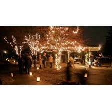 Holiday of Lights Festival in Oakwood