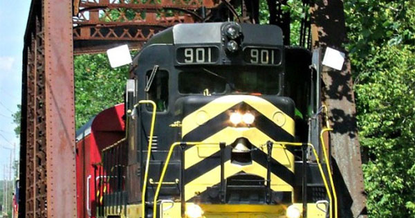 One Hour Train Rides at LM&M Railroad