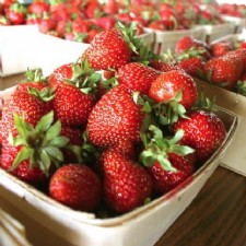 Strawberry Spectacular at Hidden Valley
