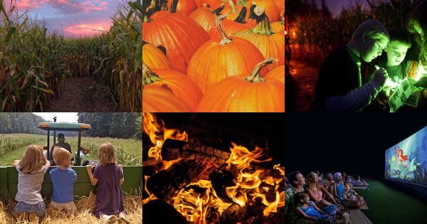 Corn Maze and Fall Festivities at Idle-Hour Ranch