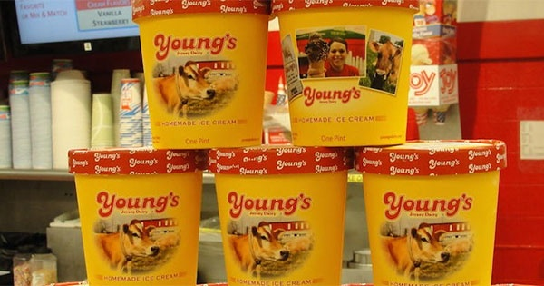 Homemade Ice Cream Pint Sale at Young's Dairy