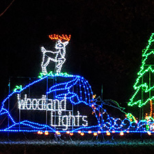Woodland Lights Holiday Festival to return for Christmas 2020