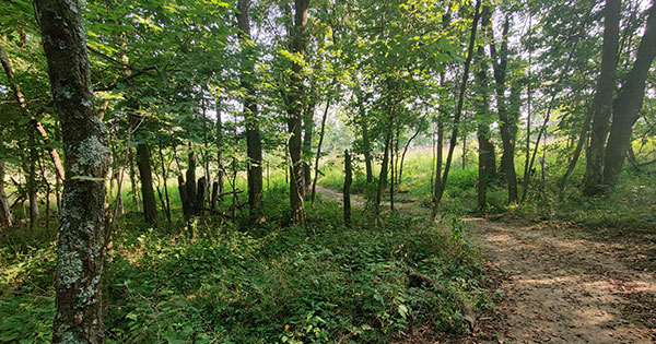 New trails open at Germantown MetroPark
