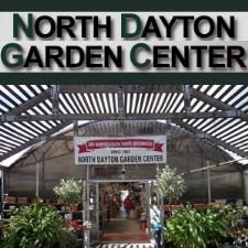 Dayton Local