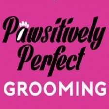 Pawsitively Perfect Grooming