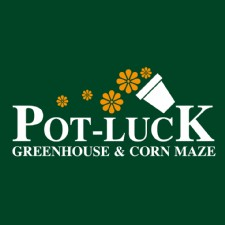 Fall Fest at Pot-Luck Greenhouse 2020