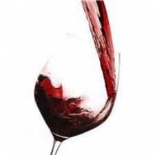 Splash! - Tasting Room & Wine Bar