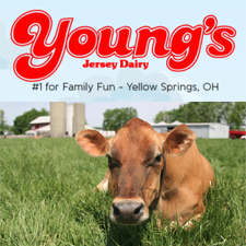 Doo Your Moo at Young's Dairy