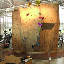 FREE Wall Night at Vandalia Recreation Center  - suspended
