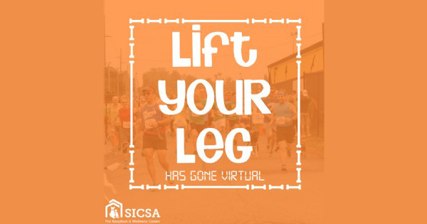 Lift Your Leg to Help Animals Goes Virtual